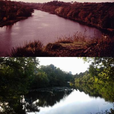 L'étang Saint Nicolas
